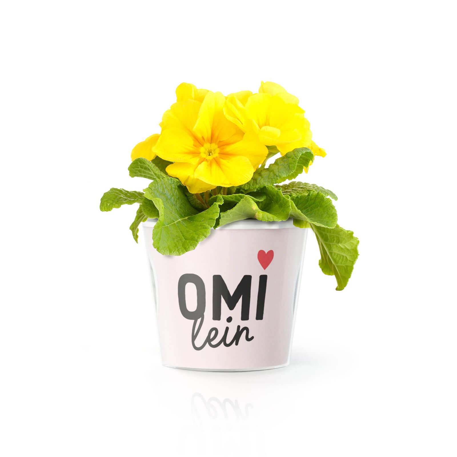 Omi mit Name Geschenk - Blumentopf