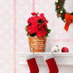 Besonderes Weihnachtsgeschenk Freund Cookie Weihnachtswuensche