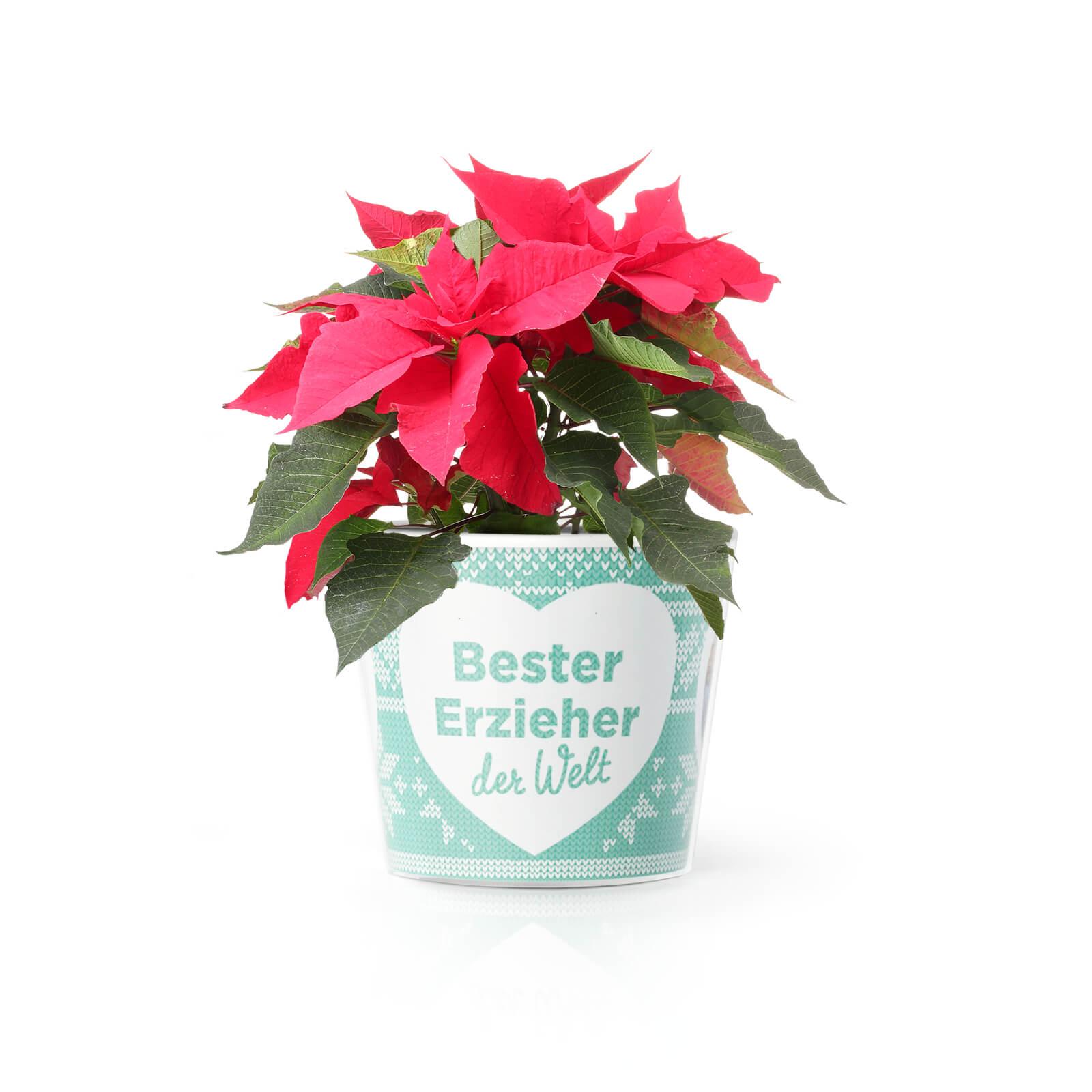 Bester Erzieher Weihnachtsgeschenk