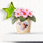 Fotogeschenk Blumentopf Weihnachten Ich Liebe Dich