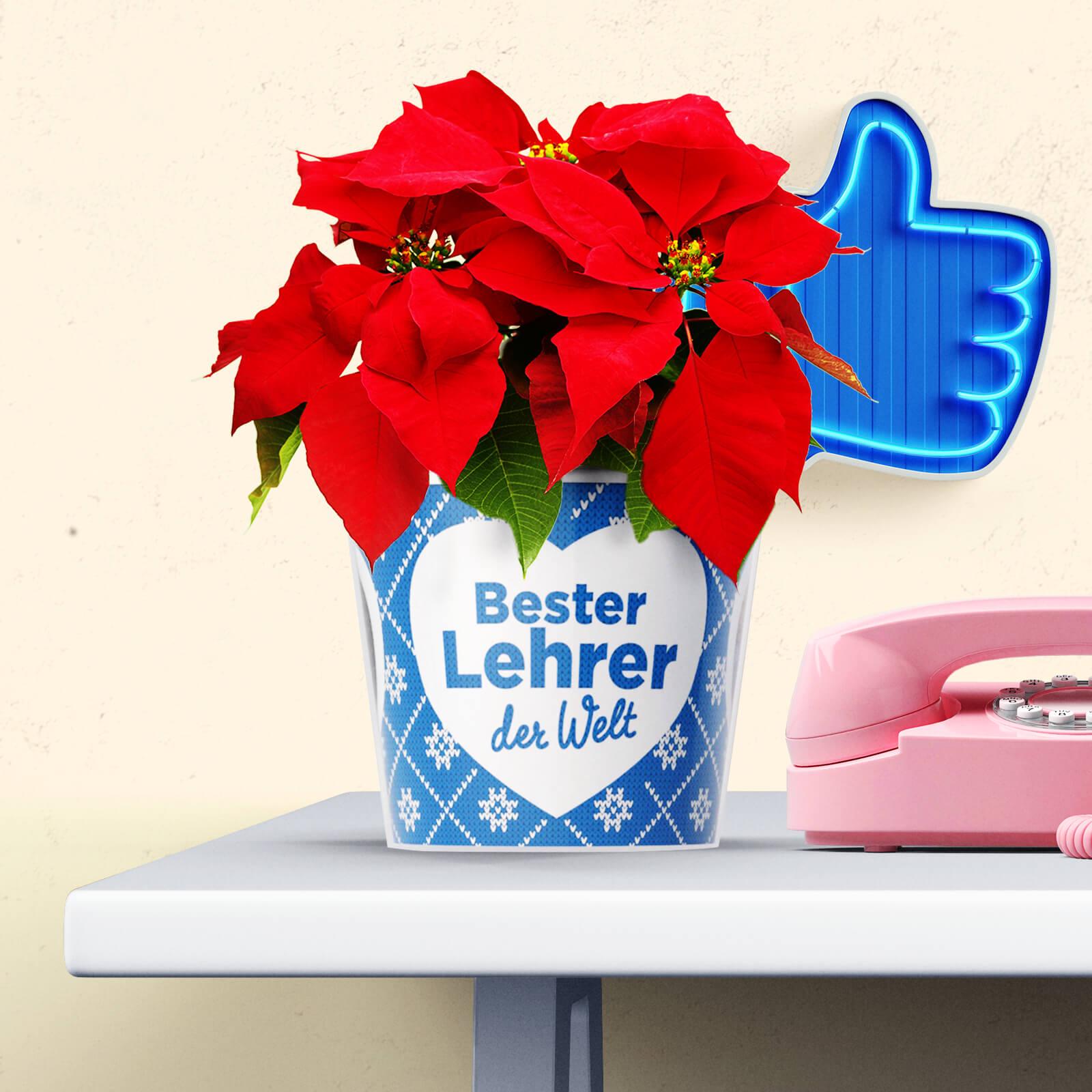 Geschenk Bester Lehrer zu Weihnachten