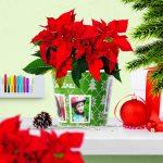 Weihnachten Geschenk Tagesmutter mit 4 Fotos