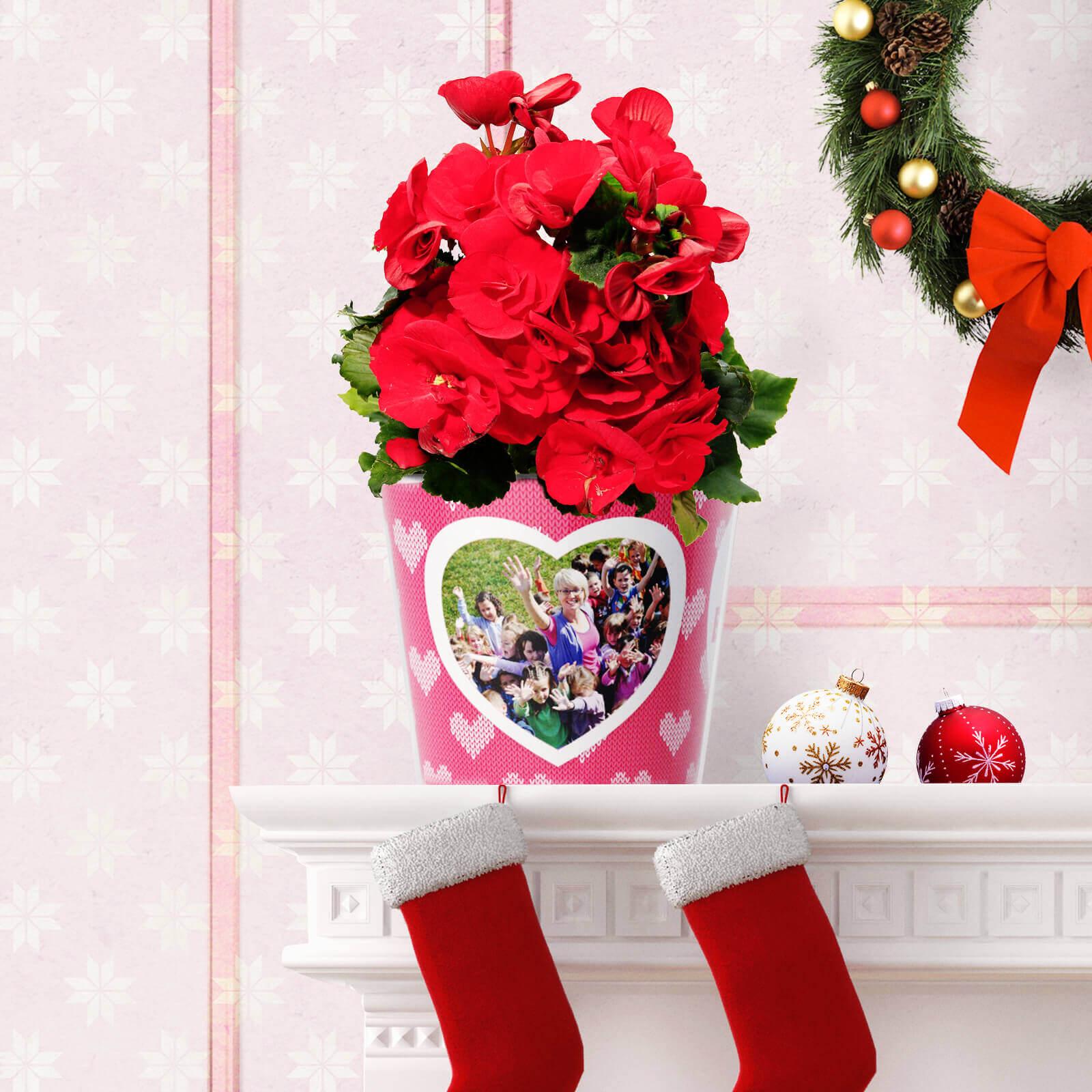 Weihnachtsgeschenk Blumentopf Beste Erzieherin