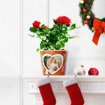 Weihnachtsgeschenk Frohe Weihnachten