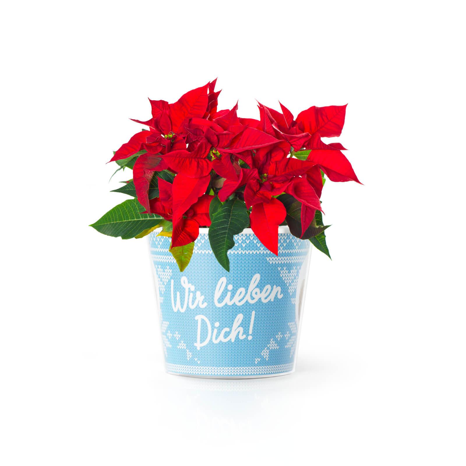 Weihnachtsgeschenke Wir Lieben Dich Oma