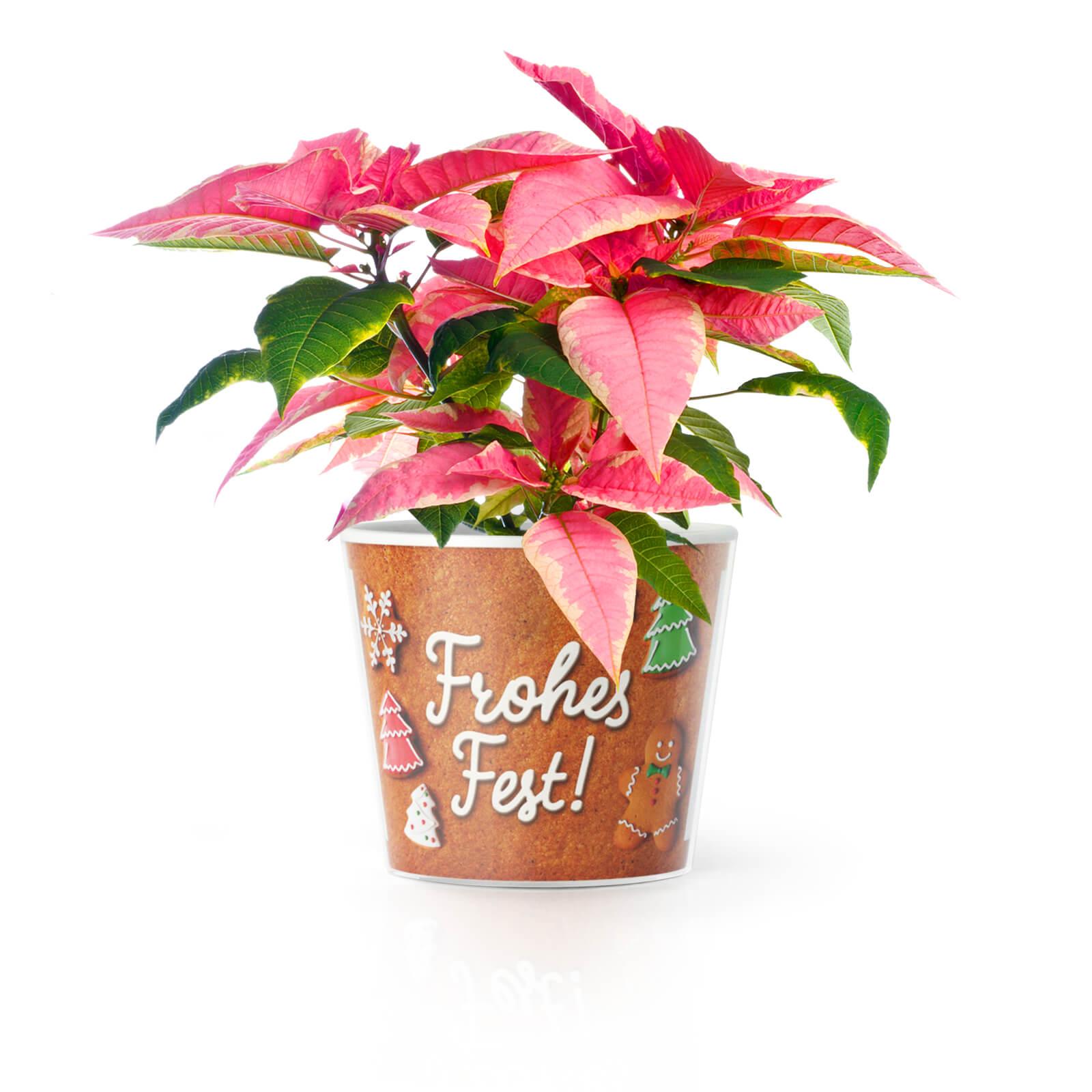 Weihnachtsgeschenkideen für Eltern Frohes Fest