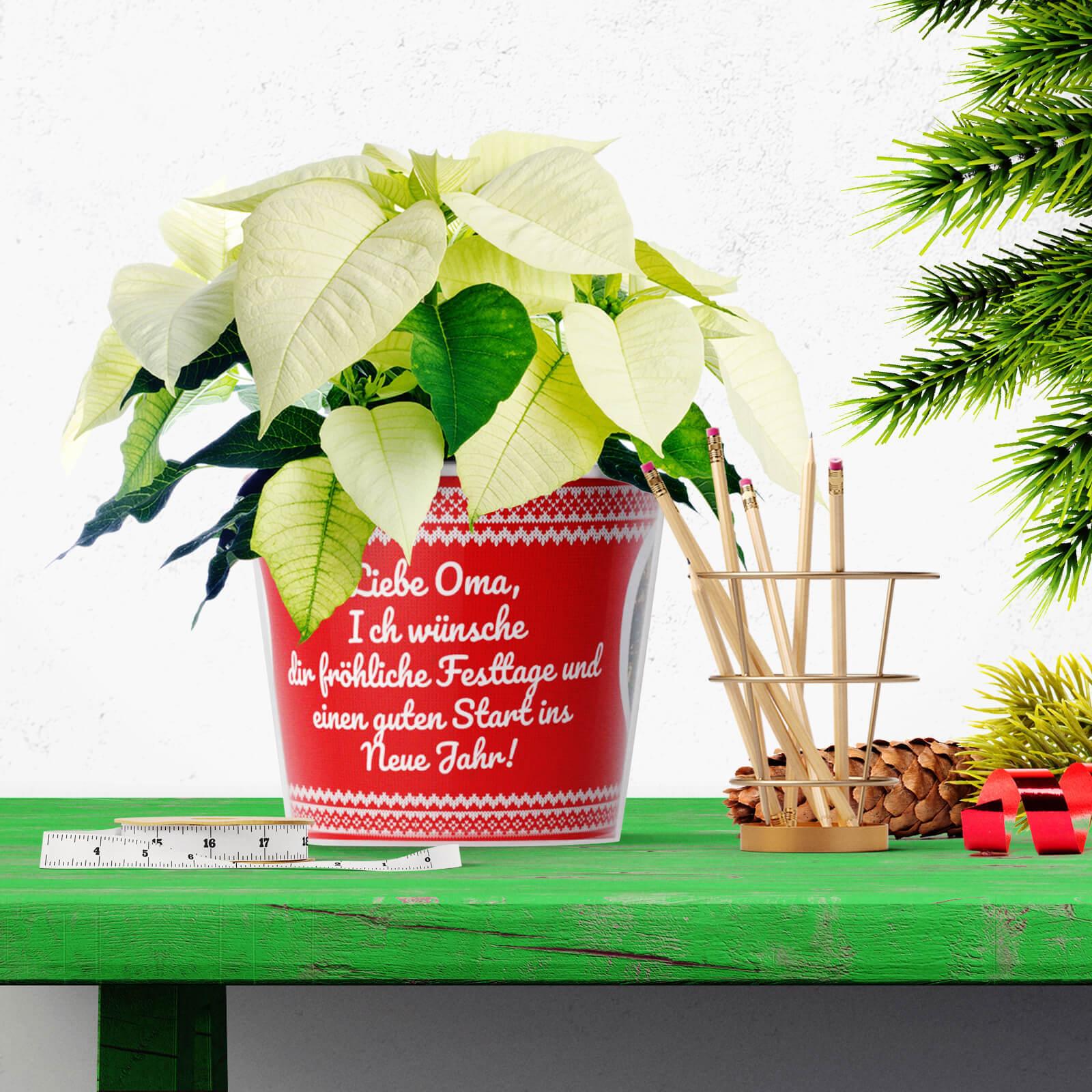 Weihnachtsgrüsse Geschenk Blumentopf