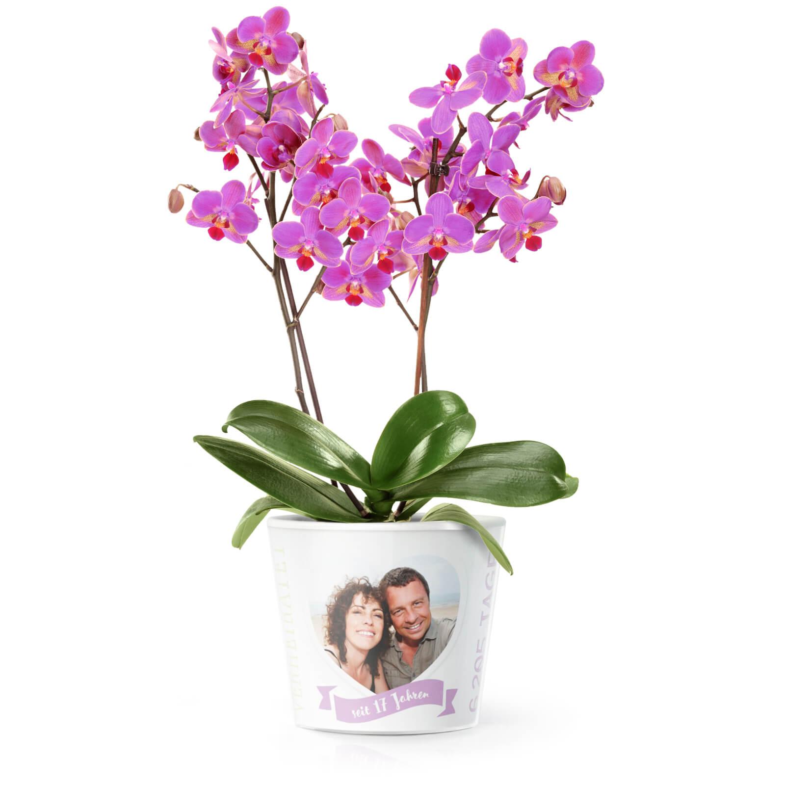 17 Hochzeitstag Orchideenhochzeit Blumentopf Von Myfacepot