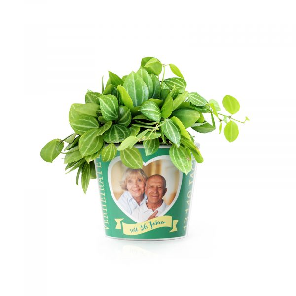 36 Jahre Hochzeitstag Smaragdhochzeit