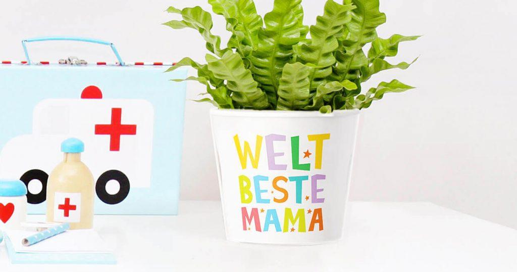 12 Blumentopf Geschenke für Mama