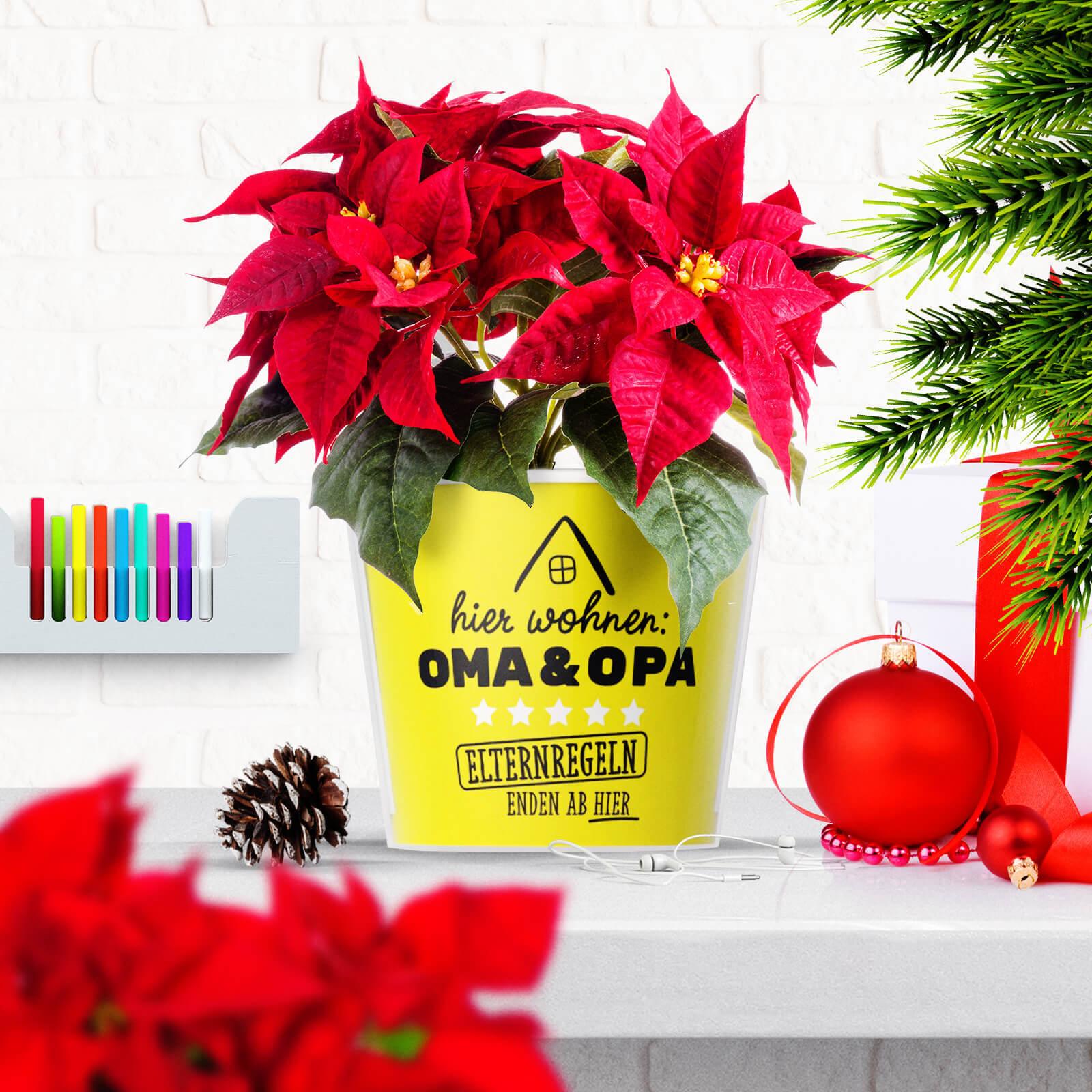 Geschenkideen Zu Weihnachten Hier Wohnen Oma und Opa