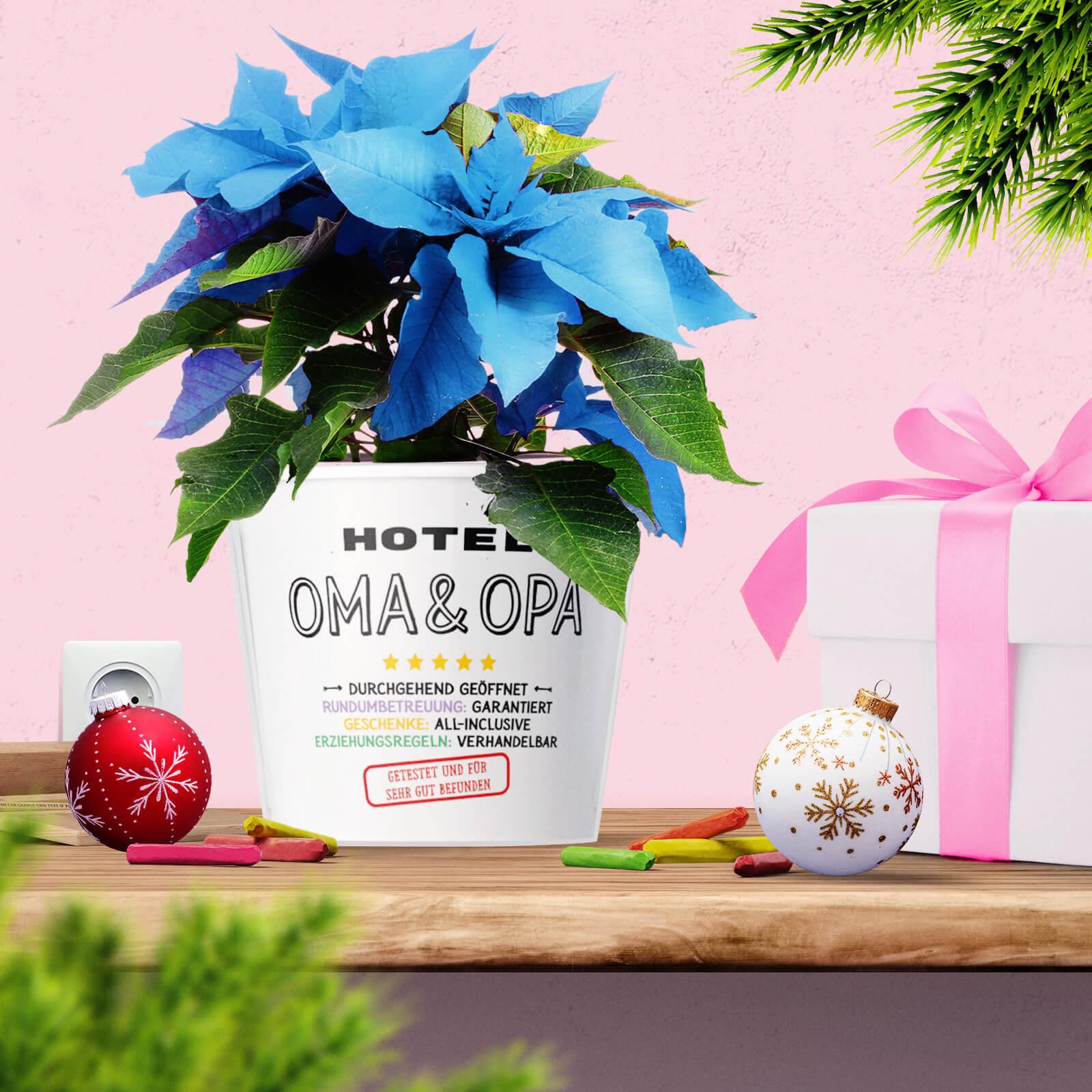 Hotel Oma und Opa: Lustiges Weihnachtsgeschenk für Großeltern